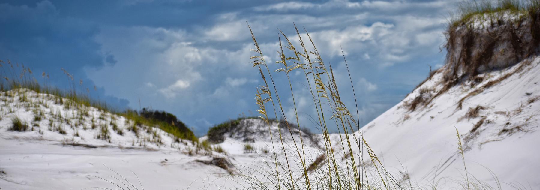 30A Sand Dunes Vacation Rentals