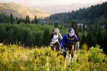 Mountain bike riders